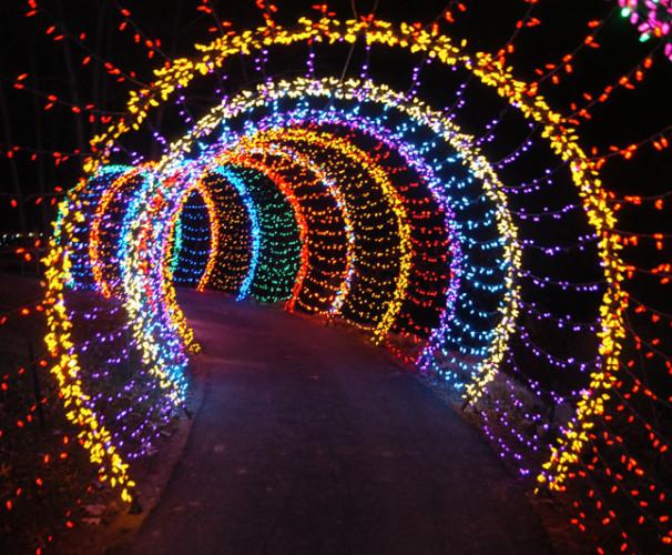 Christmas decorative LED fairy lighted tunnel